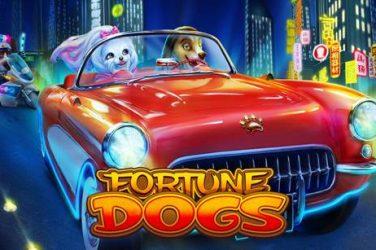 Fortune Dogs - Habanero